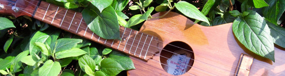 Contact Chester Ukes a Chester Ukulele Club that meet in Waverton weekly